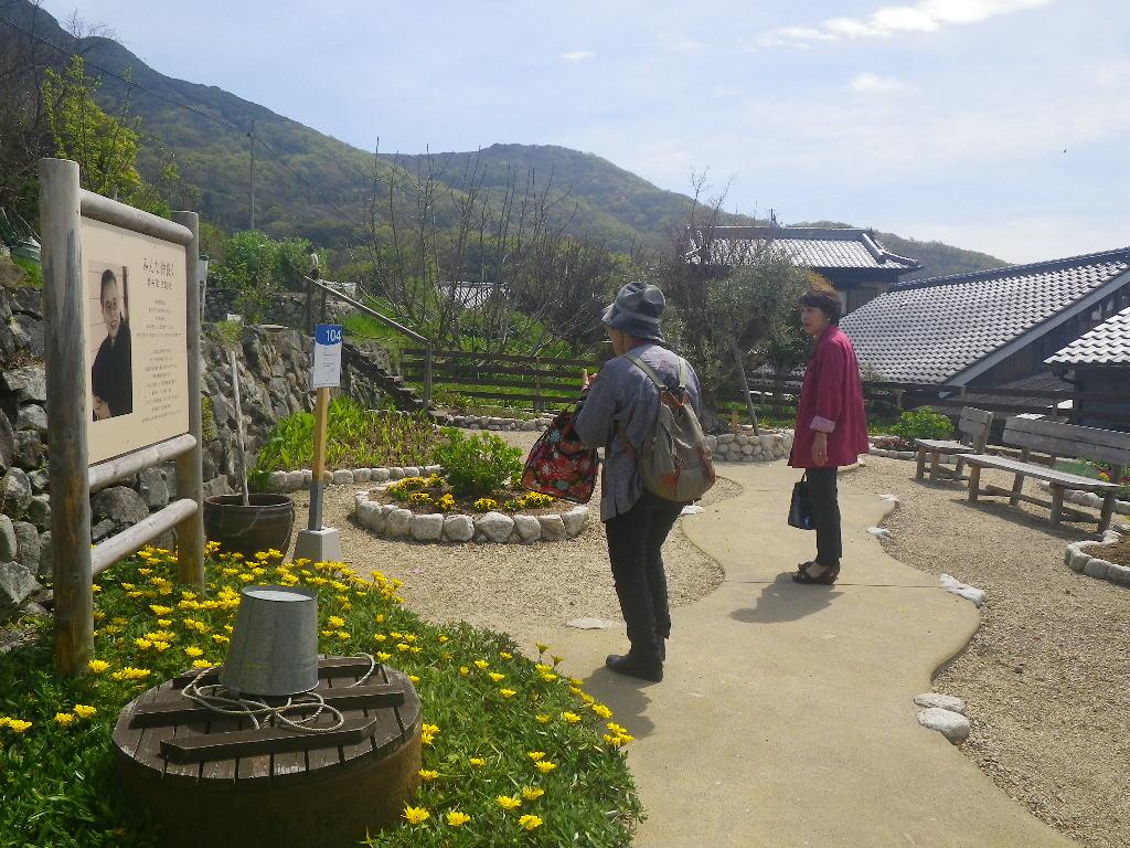 坪井栄さんの生誕地を花畑にした作品